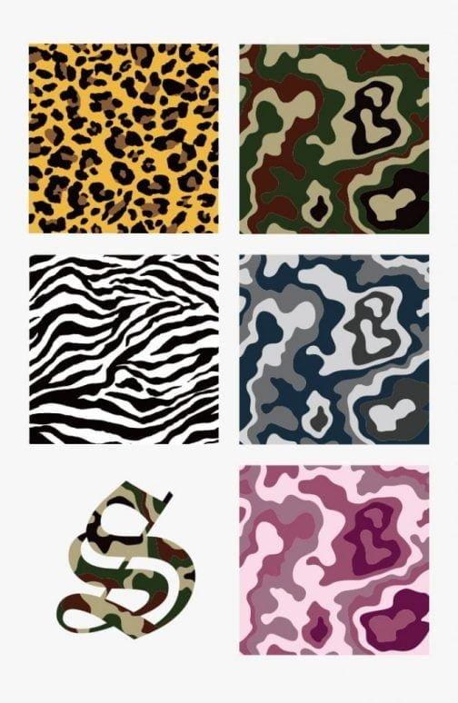 Animal Pattern & Camouflage