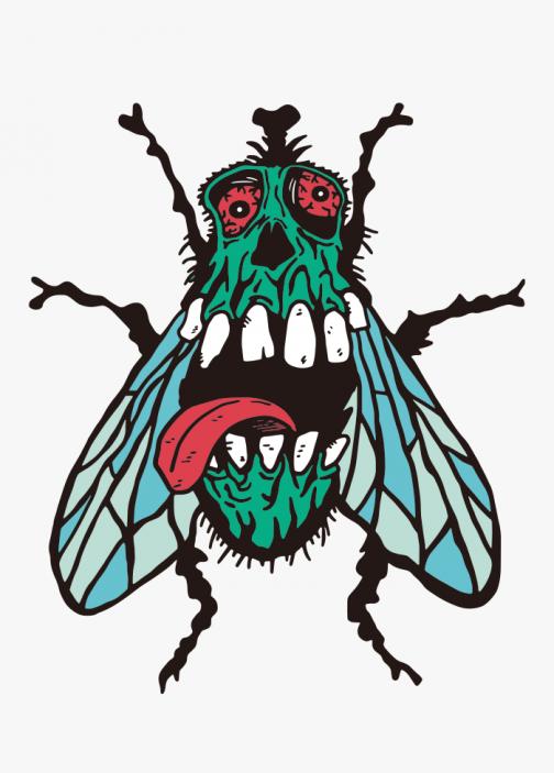 Fly Skull / Drawing