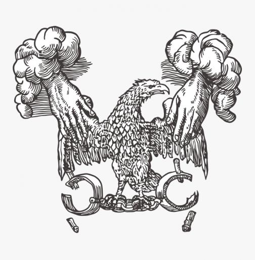Retro cultish drawing - A hawk unleashed
