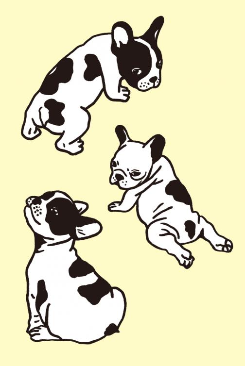 A set of French Bulldog drawing 01