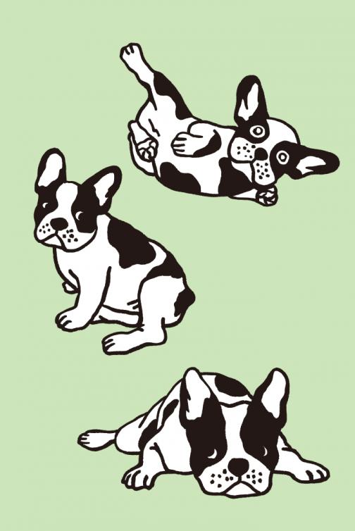 A set of French Bulldog drawing 02