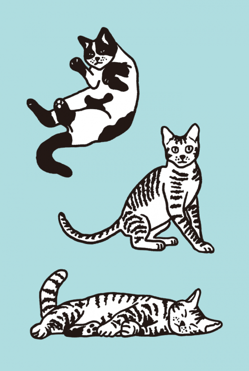 A set of cat drawing 02