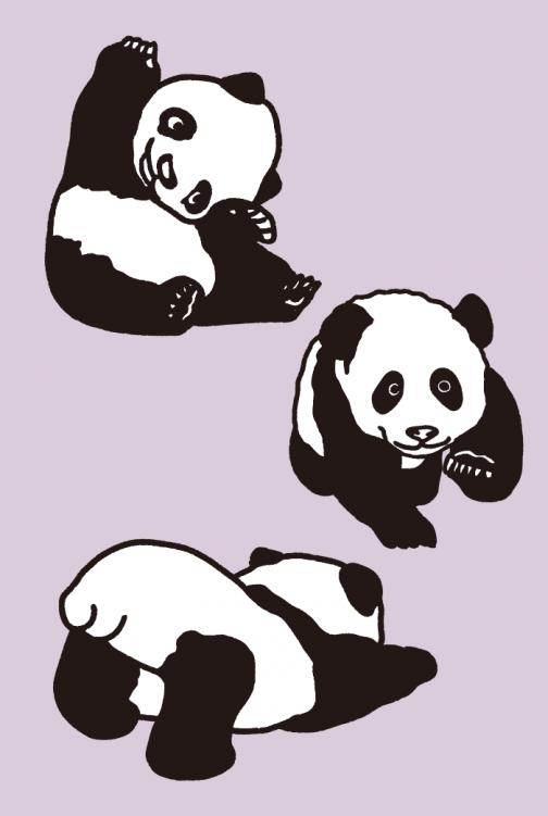 A set of panda drawing 01