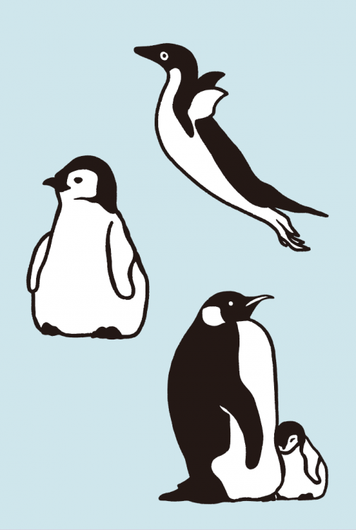 A set of penguin drawing