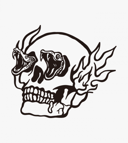 Skull and snakes - Drawing